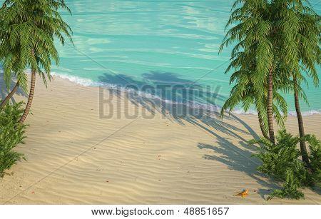 caribbean beach birds eye view
