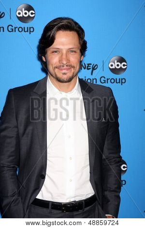 LOS ANGELES - AUG 4:  Nick Wechsler arrives at the ABC Summer 2013 TCA Party at the Beverly Hilton Hotel on August 4, 2013 in Beverly Hills, CA