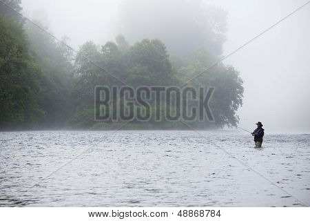 Experienced Fly Fisherman