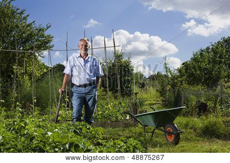 Portrait of happy senior man standing by wheel barrow in allotment