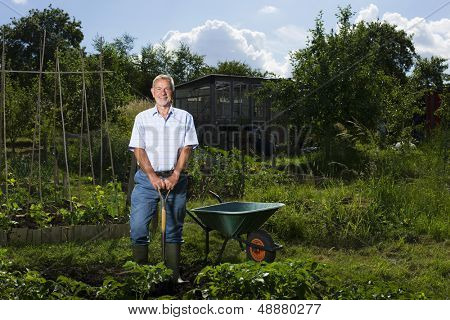 Portrait of happy senior man gardening in allotment