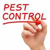 Hand writing Pest Control with red marker on transparent wipe board. poster