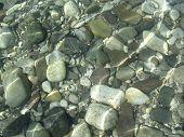 Colorful pebbles in the river Tagliamentto Italy. poster