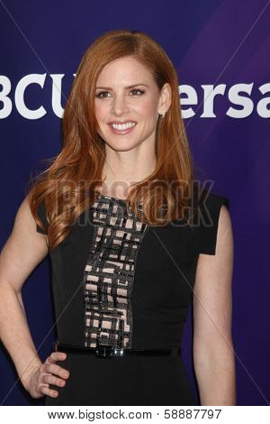LOS ANGELES - JAN 19:  Sarah Rafferty at the NBC TCA Winter 2014 Press Tour at Langham Huntington Hotel on January 19, 2014 in Pasadena, CA