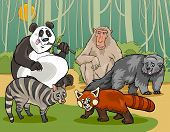 Cartoon Illustrations of Funny Asian Mammals Animals Characters Group poster