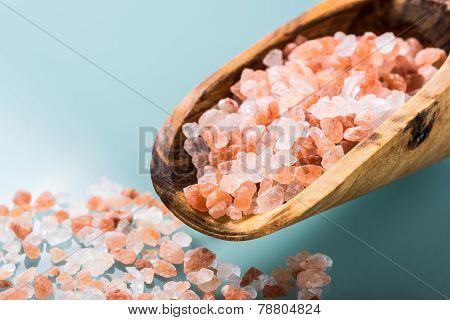 Himalayan Pink Salt On A Olive Wood Spoon