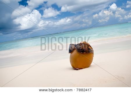 Coconut In Sun Glasses On The White Sand Beach