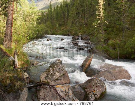 Rapid mountain stony river