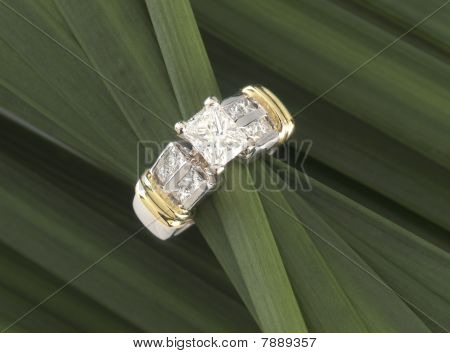 bamboo wrapped ring