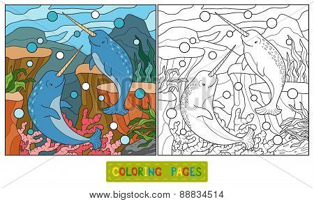 Coloring Book (narwhal)