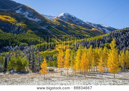 Falls Color In Colorado Mountain