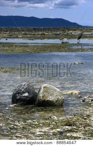 Rocks In Nosy Iranja