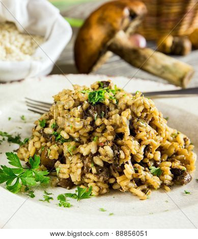 Italian Risotto With Mushrooms