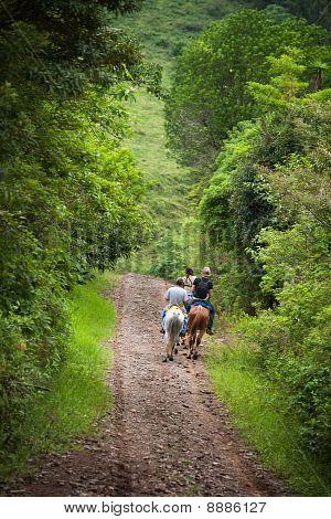 Tourists On Horseback In Costa Rica