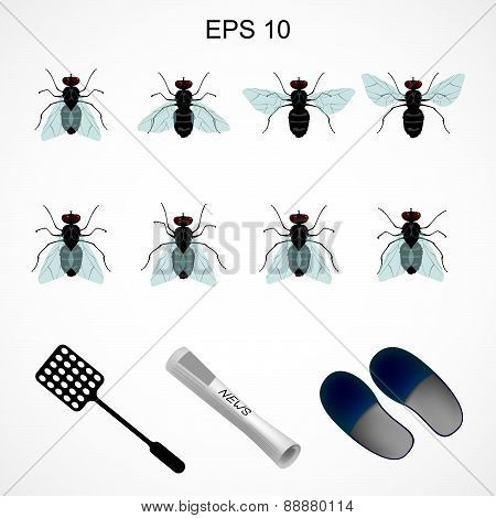 sprite sheet with fly
