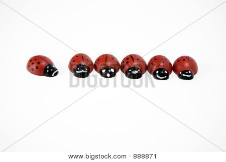 wooden ladybirds in a row and an isolated one poster