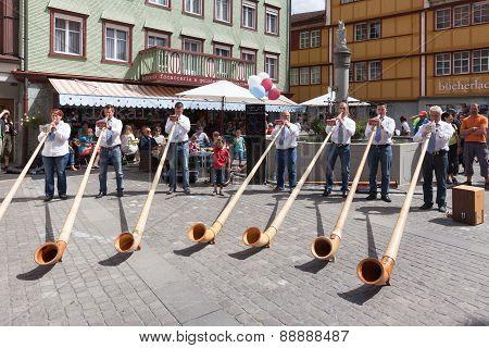 Alphorn Performance In Appenzell