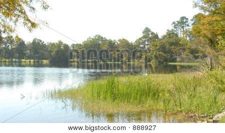 Lakeshore 2