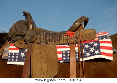 Patriotic Saddle