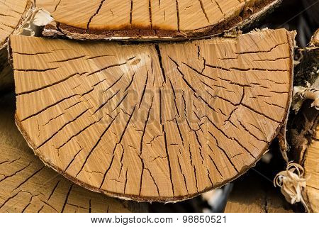 Semi-circular piece of wood in the woodpile