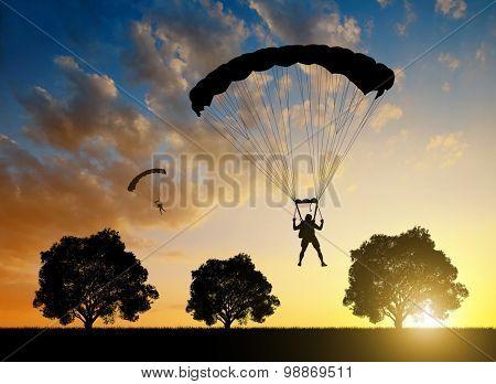Silhouette skydiver parachutist landing at sunset