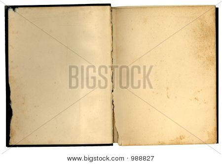Antique Open Book