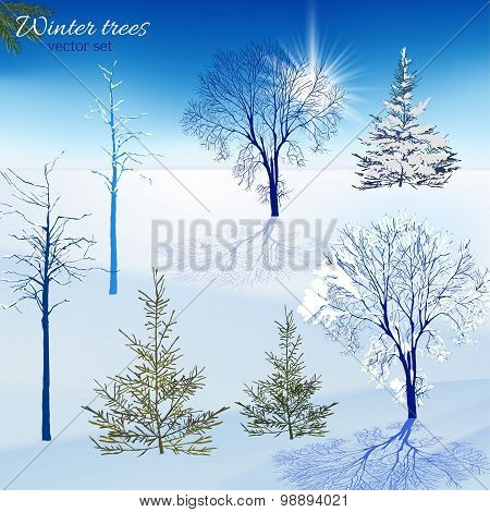 Winter trees set