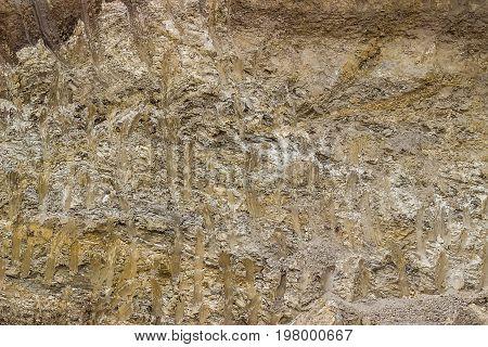 Soil Structure 3