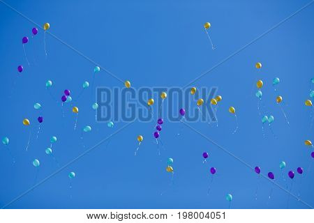 Group Of Floating Multicolored Balloons In The Blue Sky