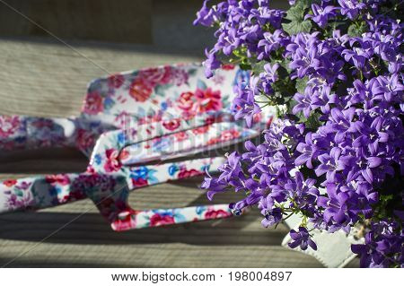 Bouquet of violet bellflower in grey pot with small rake are on the wooden background