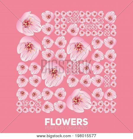 Cherry blossom flowers organized perfectly. Vector sakura flowers organized neatly by the grid. Conceptual floral generative background. Procedural graphics. Perfect order background
