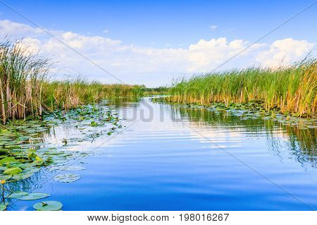 Danube Delta Romania. Water channel in the Danube Delta with swamp vegetation.