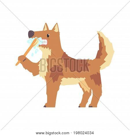 Cute cartoon dog brushing teeth with tooth brush and paste colorful character, pet grooming vector Illustration on a white background