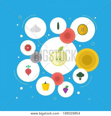 Flat Icons Radish, Jonagold, Cabbage And Other Vector Elements