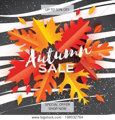 Beautiful Autumn paper cut leaves. Sale. September flyer template. Square frame. Space for text. Origami Foliage. Maple, oak. Fall poster background. Vector illustration.