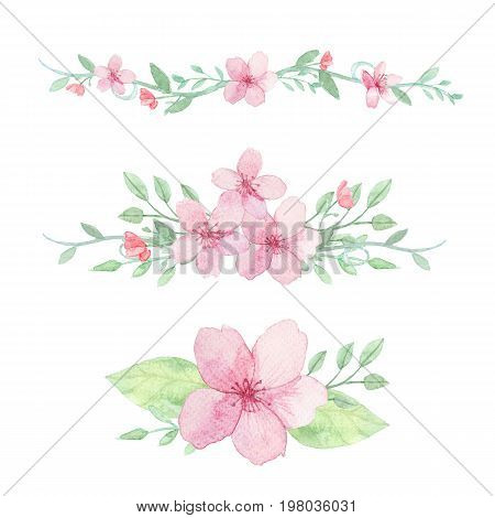 Set of flowers leaves and branches traditional drawing and painting by watercolor on white background