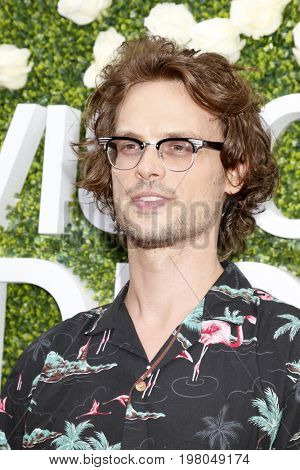 LOS ANGELES - AUG 1:  Matthew Gray Gubler at the CBS TV Studios Summer Soiree TCA Party 2017 at the CBS Studio Center on August 1, 2017 in Studio City, CA