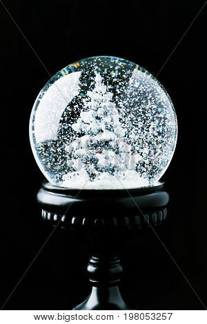 Transparent snow globe with snow and christmas tree on a black background