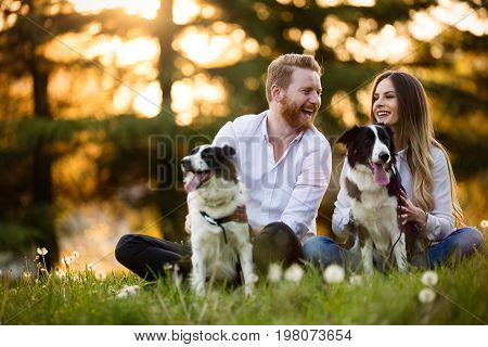 Beautiful couple cuddling and walking dogs outdoors in park poster