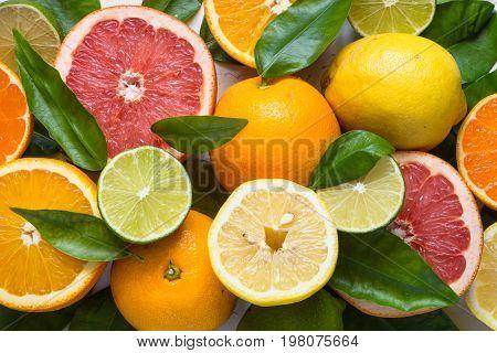 Fresh citrus fruit assortment. Different citrus fruit. Fruit food background. Healthy eating and diet.