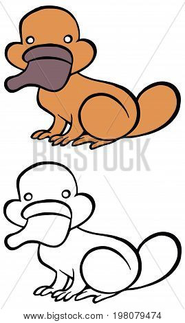 Color and bw cartoon platypus - You can design cards, part of platypus logo, mascot, corporate character and so on. Lively animal character.