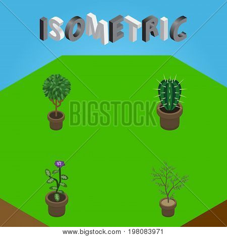 Isometric Houseplant Set Of Peyote, Flower, Fern And Other Vector Objects