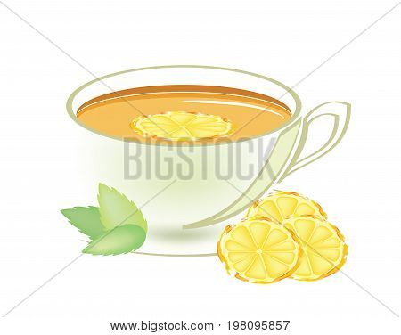 Clear warm cup of mint tea with a slice of mint