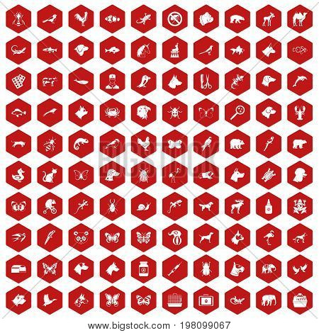 100 animals icons set in red hexagon isolated vector illustration