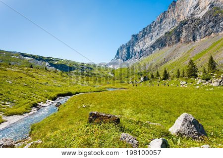 Sixt Fer A Cheval Alps France National Park H