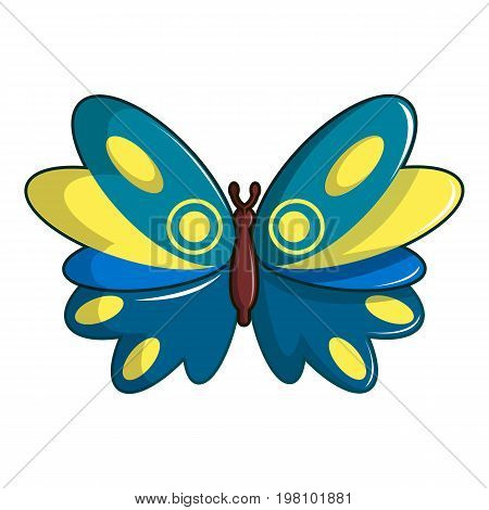 Butterfly papilio zagreus icon. Cartoon illustration of butterfly papilio zagreus vector icon for web design