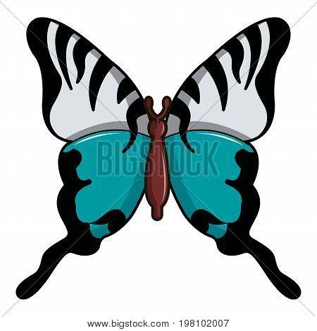 Papilio palinurus butterfly icon. Cartoon illustration of papilio palinurus butterfly vector icon for web design