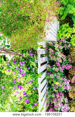 Topview White Picket Fence In Garden.
