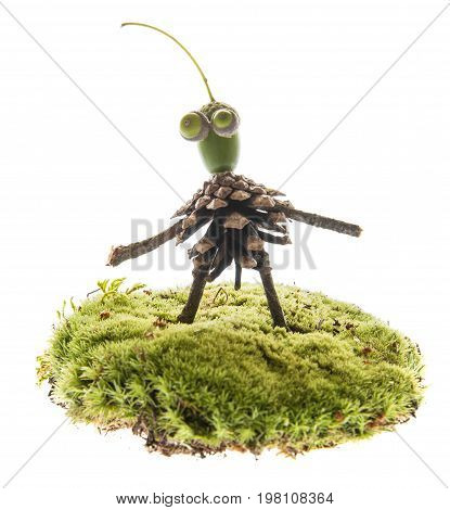 Creature made from natural materials isolated on white - autumnal natural toy