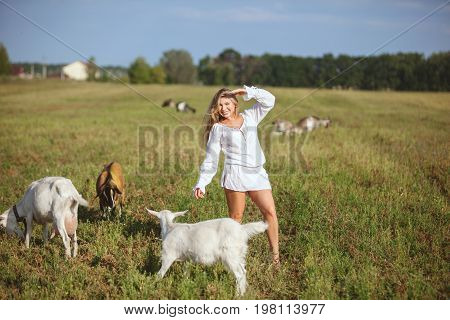 In the field to graze domestic goats next to a happy woman and smiling.